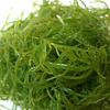 Seaweed Extrakt